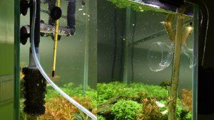 Фильтрация аквариума с растениями