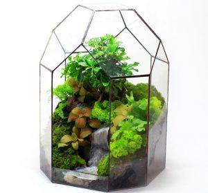 Геометрический сад