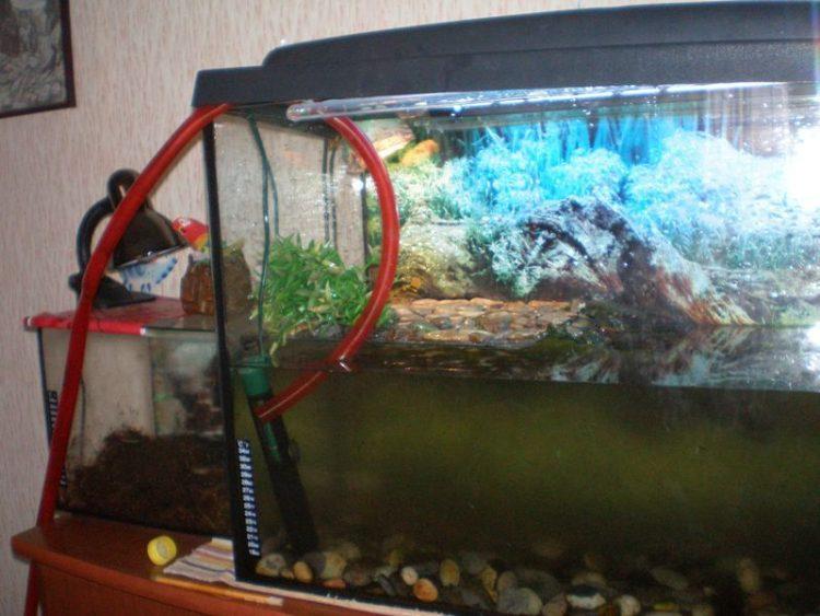 Применение аквариумной воды